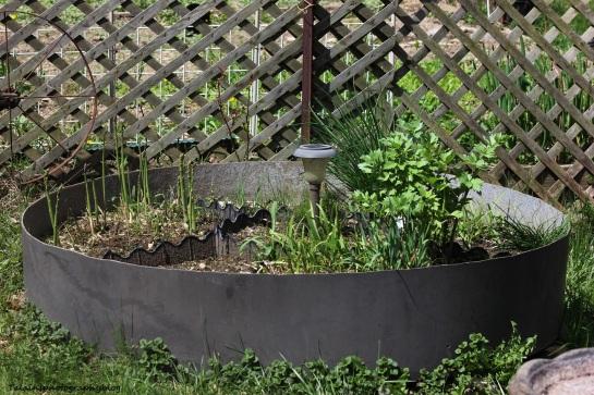 herb garden01