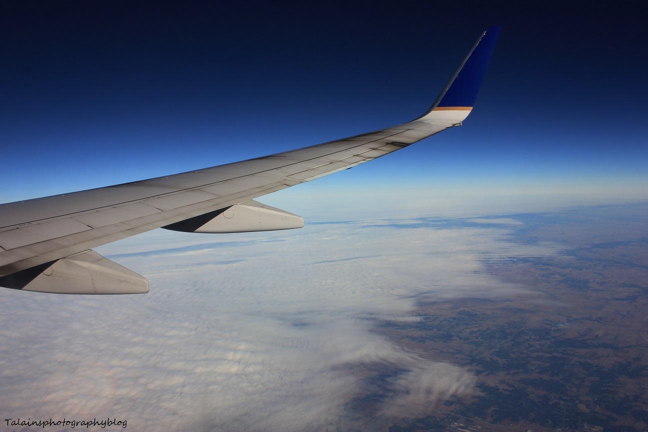 L.A.X. flight 012