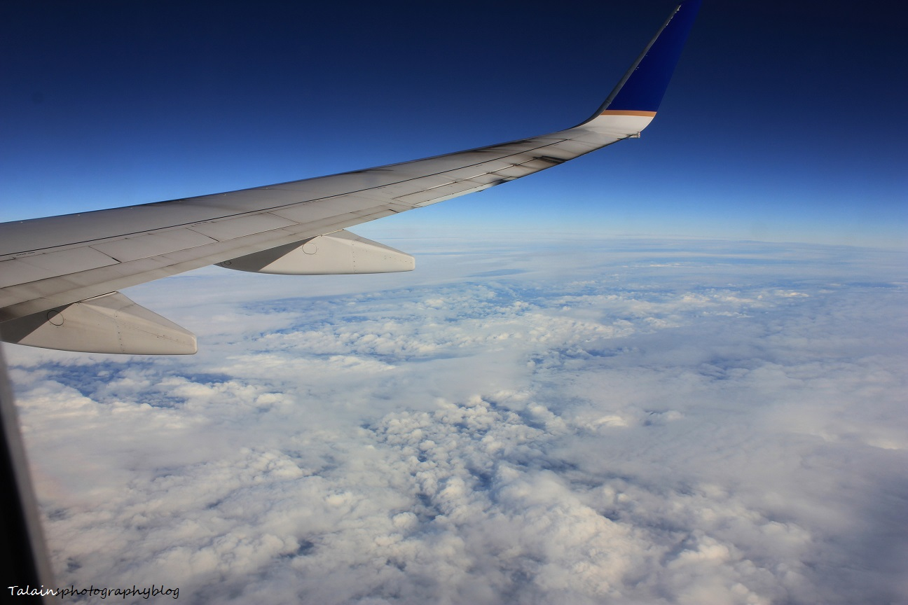 L.A.X. flight 013
