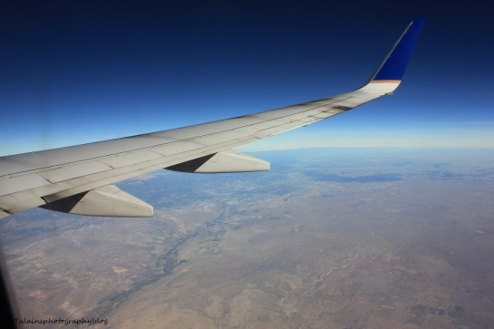 L.A.X. flight 019