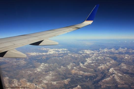 L.A.X. flight 031