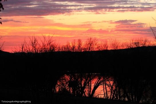 sun set 014