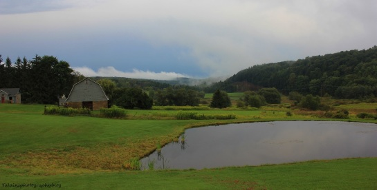 landscape24