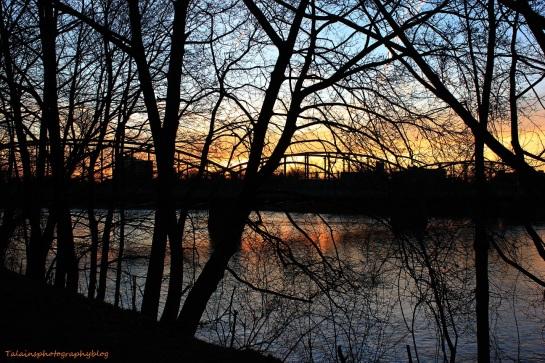 sun set 020