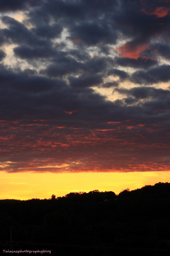 sun set 055