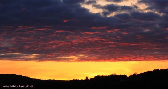 sun set 056