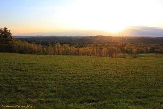 sun set 035