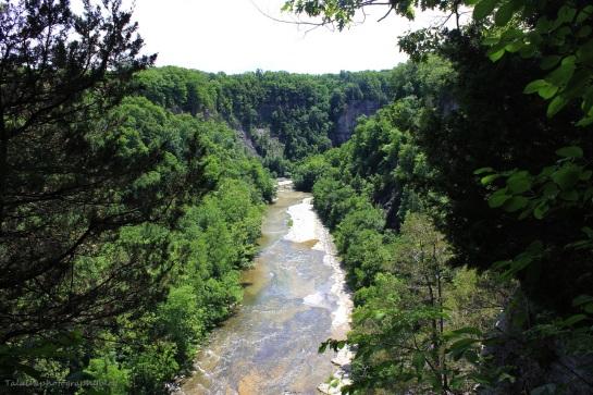Taughannock Falls 08