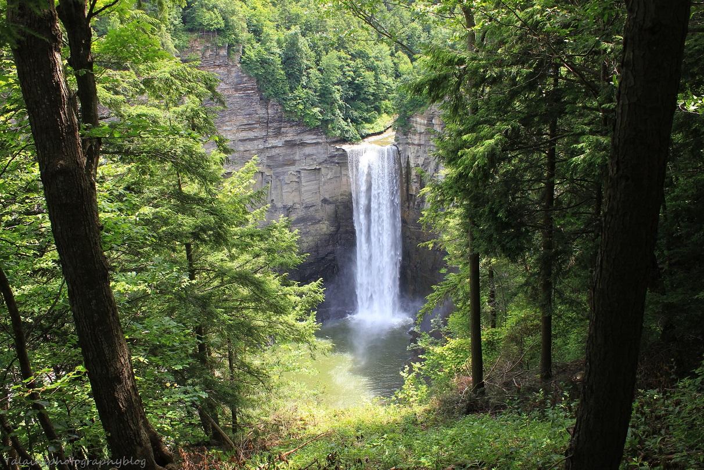 Taughannock Falls 16