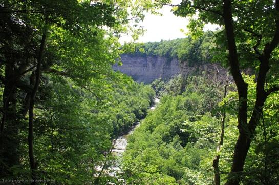 Taughannock Falls 19