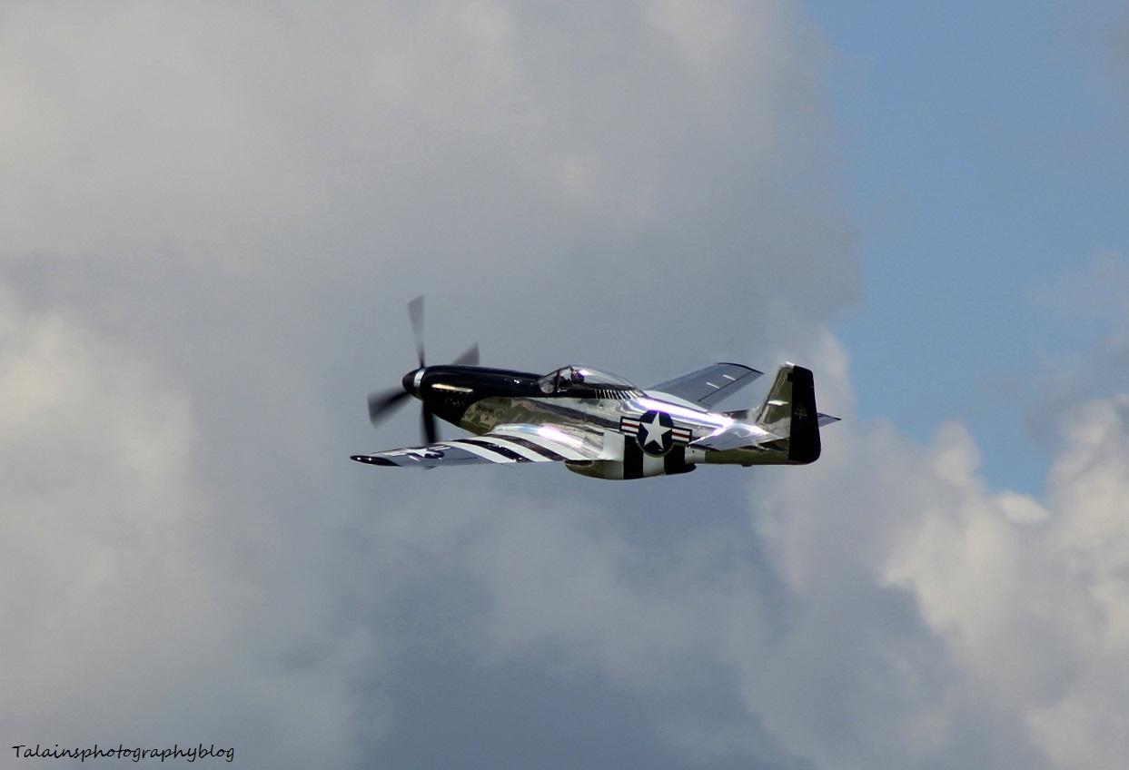 R.A.S. 023 P-51