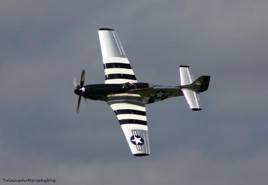 R.A.S. 024 P-51