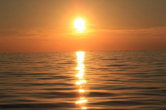 sun set 082