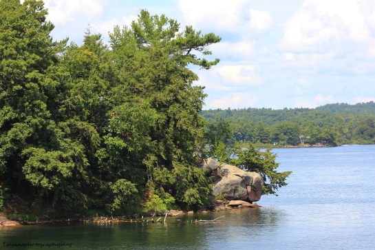 Wellesley Island SP 012
