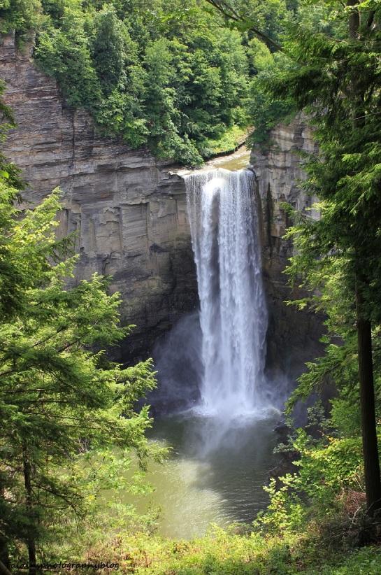 Taughannock Falls 17
