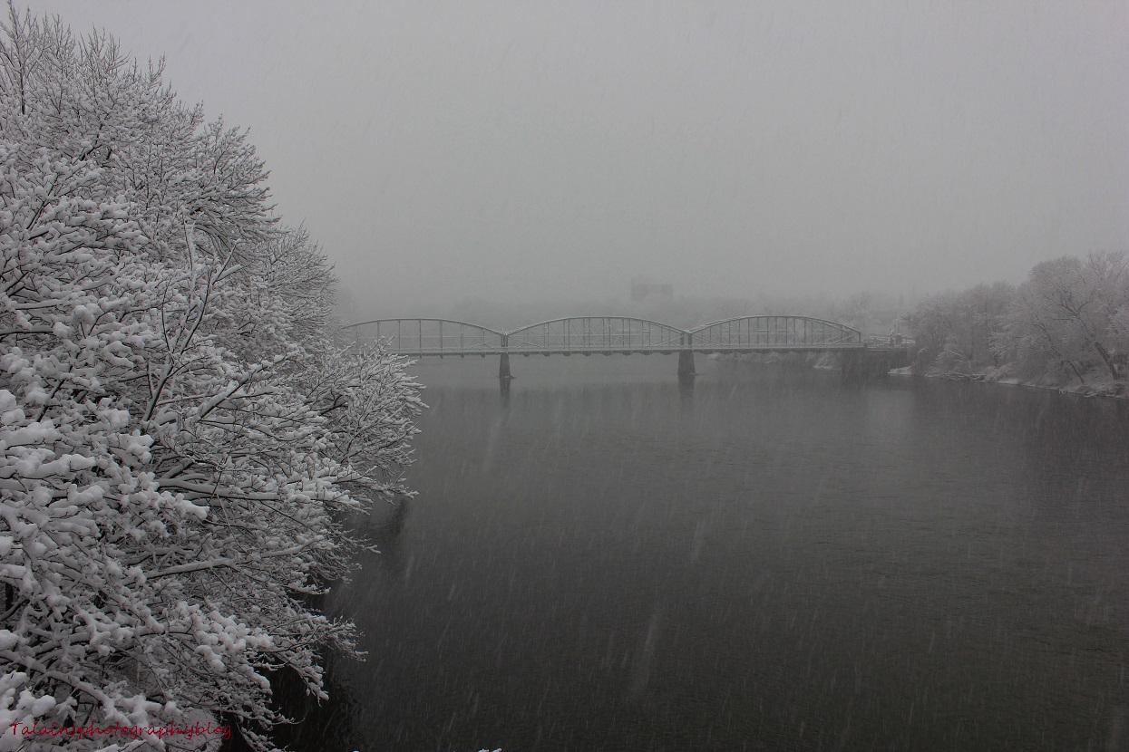 snow 42