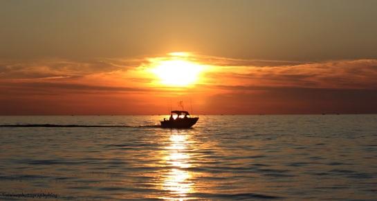 sun set 084