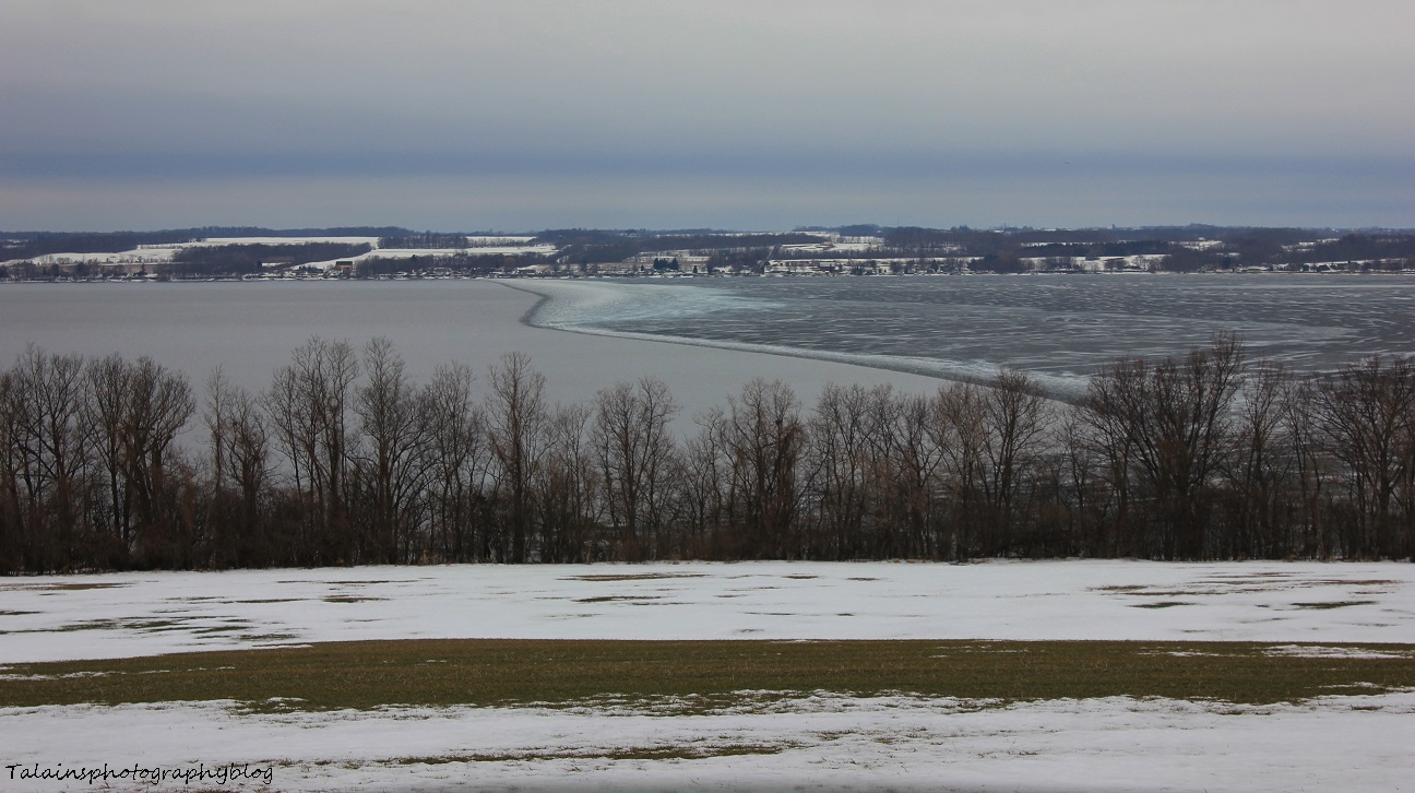 Cayuga Lake 005