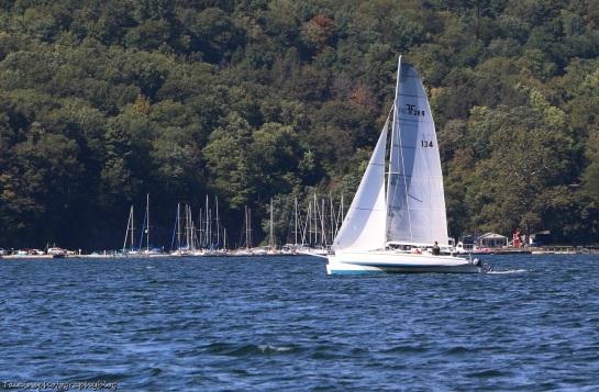 Boats 05