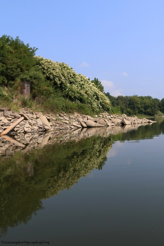 Landscape 030