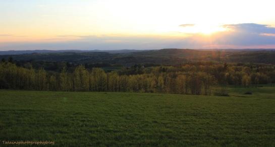 sun set 038