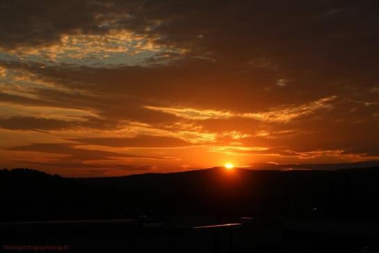 Sunset 029