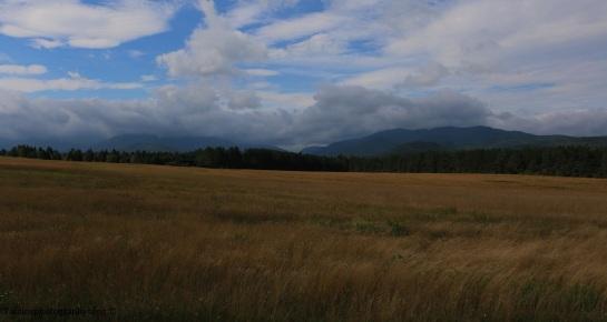 landscape-023jpg